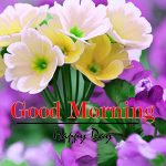 Flower Good Morning Pics Download Free