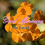 Flower Good Morning Photo Free Download