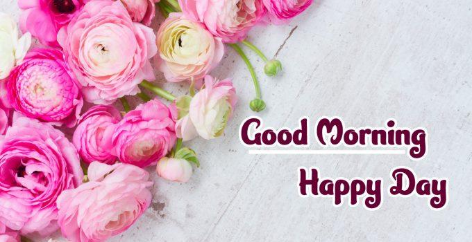 Flower Good Morning Images wallpaper free hd