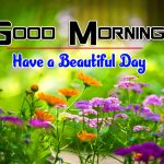 Flowers Good Morning Free Download