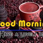 Fresh Good Morning Images photo hd