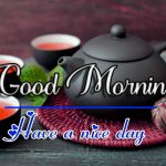 Fresh Good Morning Images pictures hd