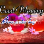 Fresh Good Morning Images photo pics hd