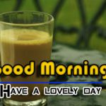 Fresh Good Morning Images pictures free hd