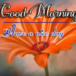 Fresh Good Morning Images pics photo hd