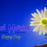 199+ Best Good Morning Images Download for Friend