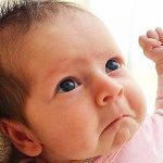 Funny Baby Whatsapp Dp Hd Free Download Images