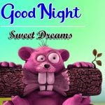 Funny Good Night Wallpaper Download