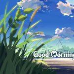 Good Morning Nature Images photo pics hd