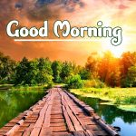 Good Morning Nature Images pictures pics hd