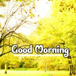 Girlfriend Good Morning Wishes