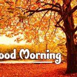 Good Morning Nature Images pics hd