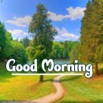 Good Morning Nature Images photo download