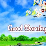 Good Morning Nature Images photo for whatsapp