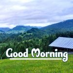 Good Morning Nature Images pictures hd