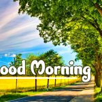Good Morning Nature Images photo free hd