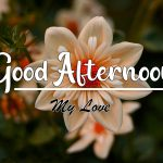 Good Afternoon Images photo hd