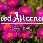 Good Afternoon Images pics download