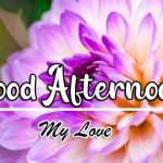 best Good Afternoon Images photo hd
