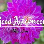 Good Afternoon ImagesGood Afternoon Images photo download