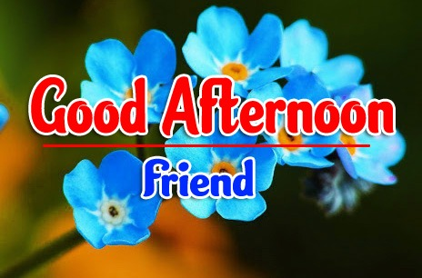 Good Afternoon Images photo pics hd