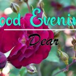 Good Evening Images photo for hd