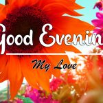 Good Evening Images wallpaper free download