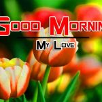 Good Morning photo Download Free