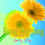 Top Free Good Morning Images Download