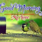 Good Morning Wishes Photo Pic Downward