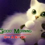 Good Morning Wishes Pics Wallpaper Download Free