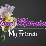 Flower Free Good Morning Wishes Images Download