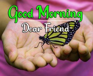 Good Morning HD Images Wallpaper Free