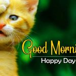 New Free Good Morning Wishes Pics Images Download