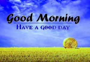 Good Morning HD Images Wallpaper Pics Download