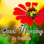 Good Morning Pictures Download Free