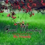 New All Good Morning Images Download