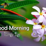 Good Morning Wishes Images Download for Friend