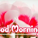 Good Morning Flowers Images wallpaper free hd