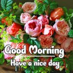 Good Morning Flowers Images pictures free hd