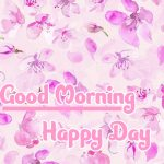 Good Morning Flowers Images pics download