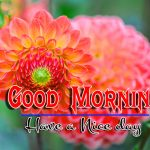 Good Morning Image Pics Download