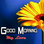 Good Morning Images Pics Wallpaper Pics Download