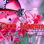 Good Morning Images New Download