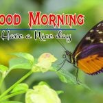 Good Morning Images pictures pics hd