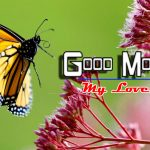 Good Morning Images wallpaper photo hd
