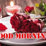 Good Morning Red Rose Images pics hd