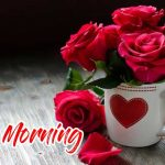 Good Morning Red Rose Images pictures for hd