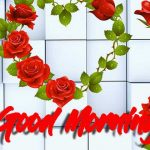 Good Morning Red Rose Images photo hd