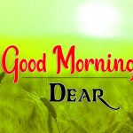 373+ New Collection Of Good Morning HD Free Download In 2021